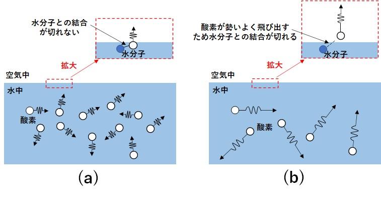 水温変化による溶存酸素の動きの変化