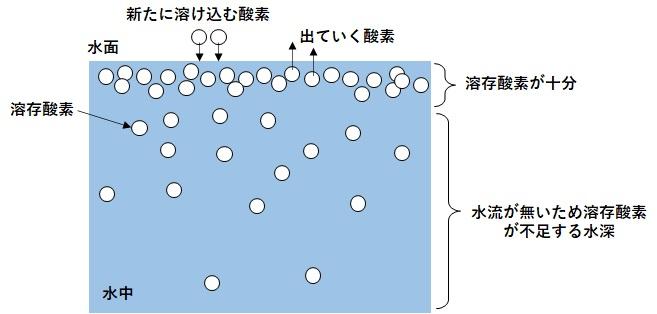 水面が静止している場合の溶存酸素の図