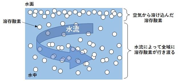 水流が生まれた時の溶存酸素の図