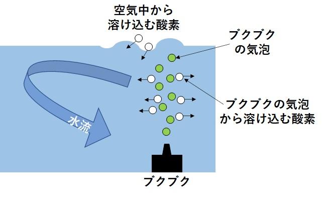 ブクブクによる溶存酸素の確保
