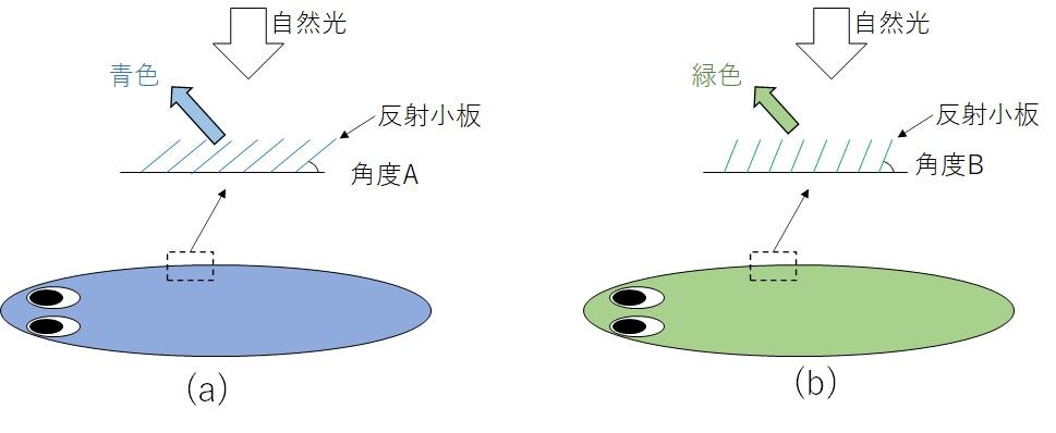 反射小板の説明図