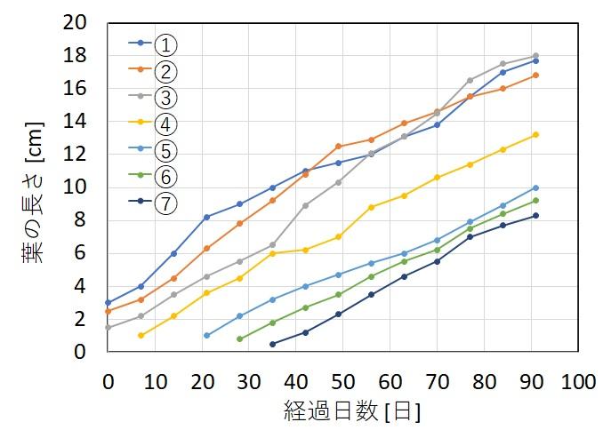 ミクロソリウムの成長過程を調査した結果のグラフ