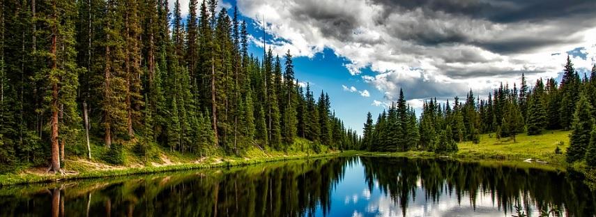 大自然の写真