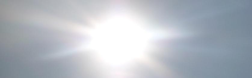 直射日光の写真