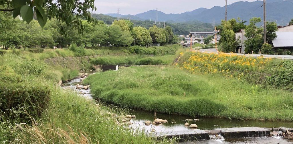 有馬川の写真