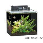 省スペースでどこでも設置可能な水槽 -GEXグラステリア250-