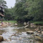 【西宮】甲山森林公園の仁川で川魚を捕まえよう!