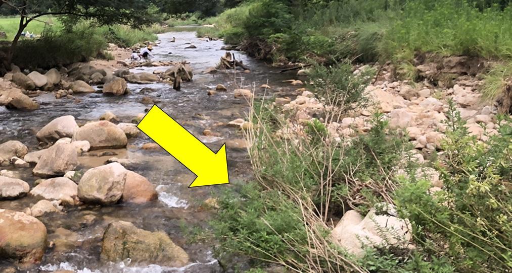 川魚を捕まえるのに狙い目となる場所の紹介写真