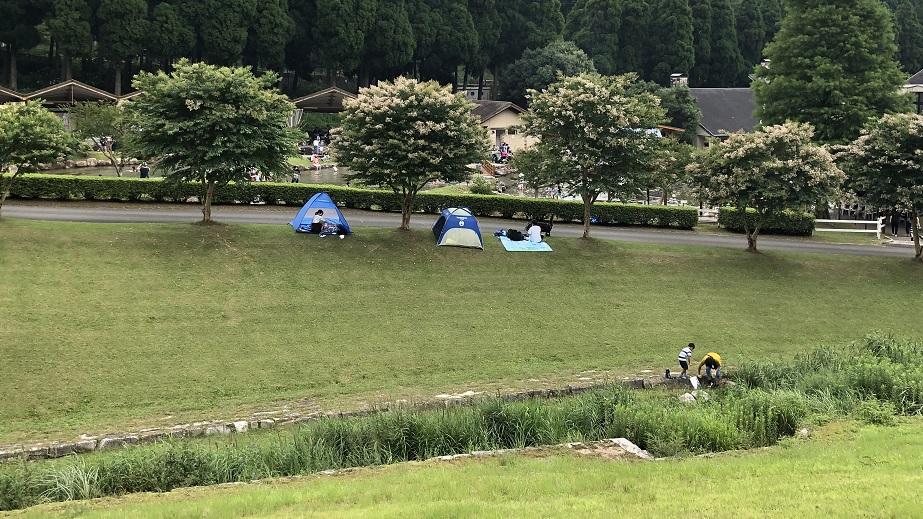 ヨーデルの森の中でテントを張った例の写真