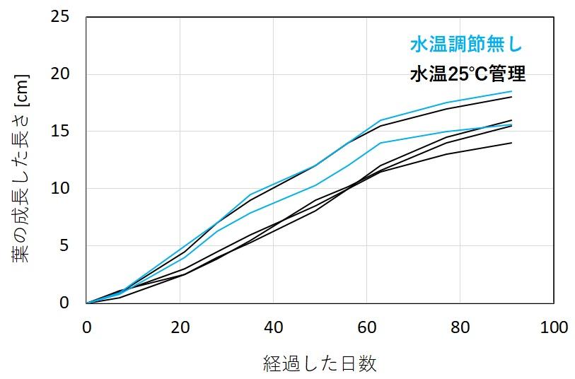 ボルビティスの成長速度と水温の関係