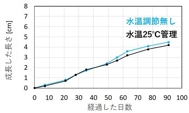 アヌビアスナナの成長と水温の関係