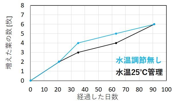 アヌビアスナナの葉の増え方と水温の関係